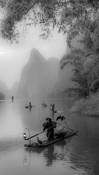 Fisherman on Li River
