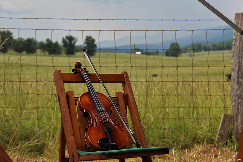 Fiddle with a view.
