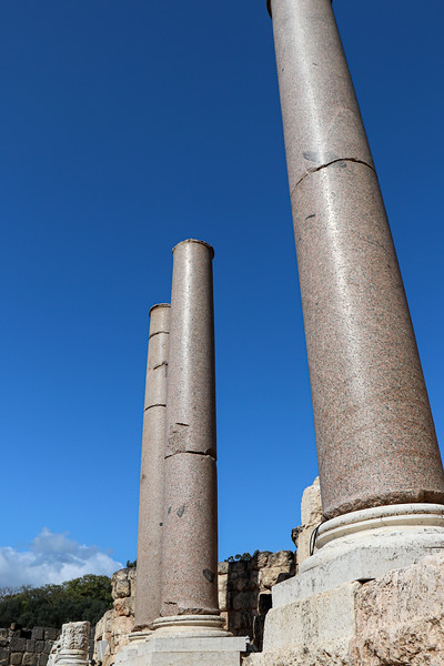 A few of the imported granite columns