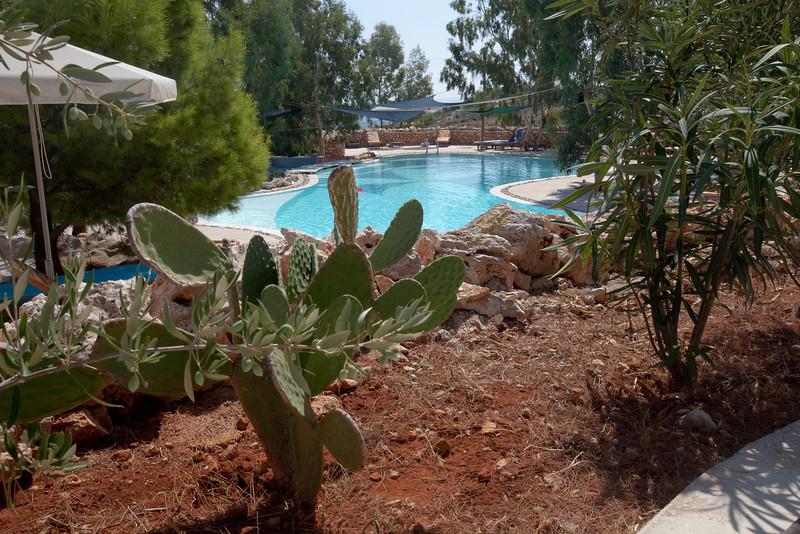 Peligoni pool garden