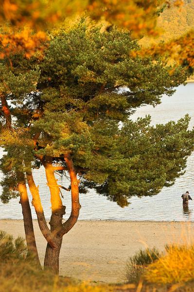 lac2009a_1035.jpg
