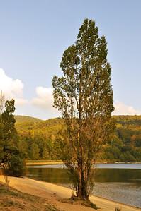 lac2009a_936.jpg