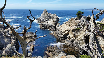 Pinnacle Cove, Point Lobos State Reserve