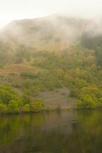 Bluebells on the Banks of Loch Lomond, Scotland