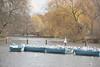Regent's Park boats