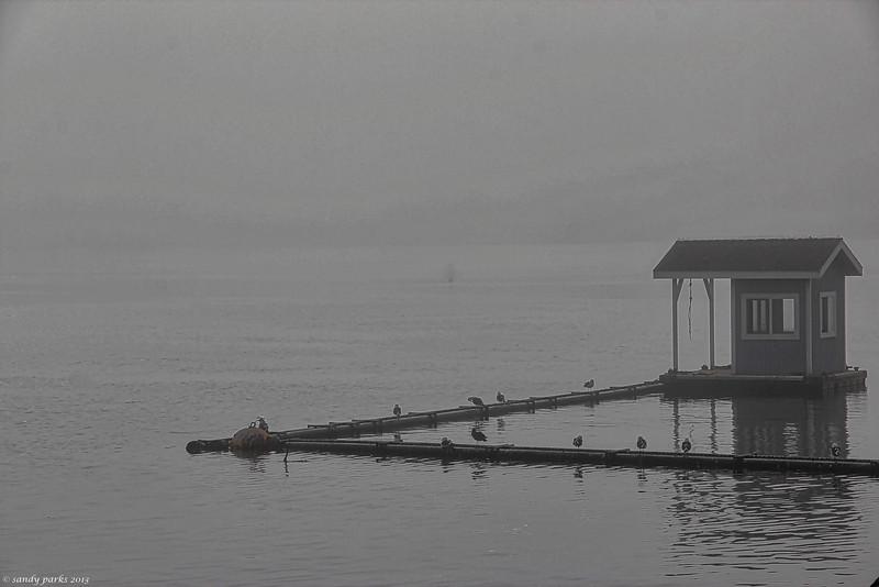 Long Beach Harbor.jpg