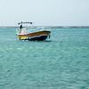 Ferry to e Palm Island
