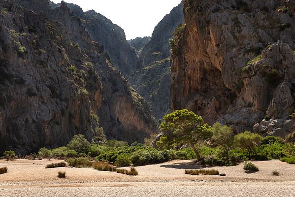 If you want to walk to Torrent de Pareis, you walk through this gorge which is about a 5 mile walk....hear it is a gorgeous walk!