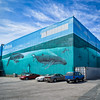 Wyland Wall New Bedford