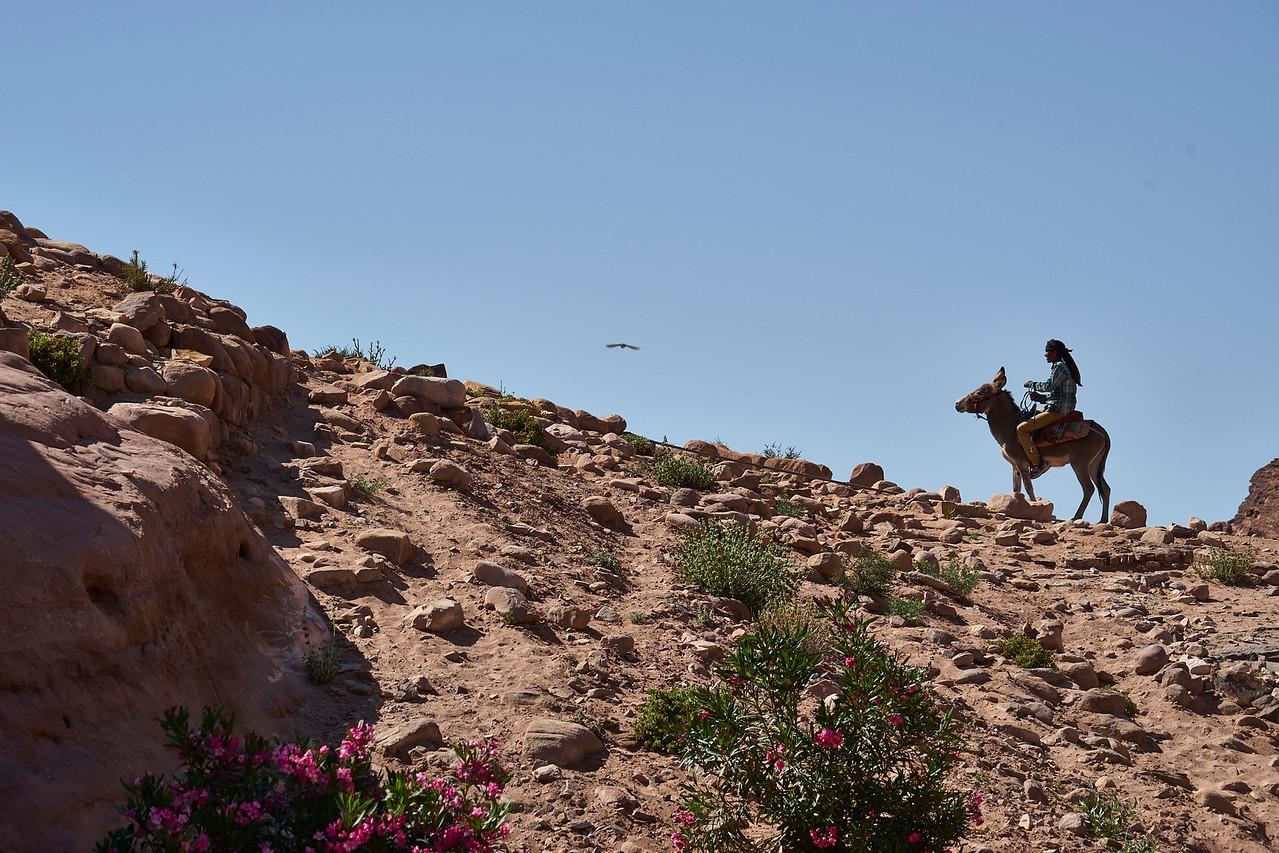 Rider on the ridge