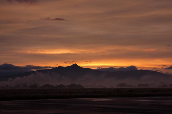 Mexican Sunrise