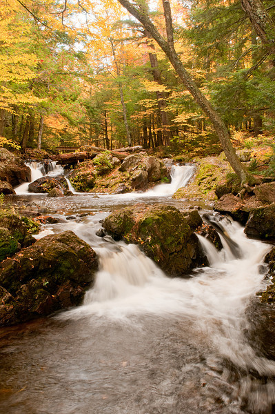 TRMI-10042: Overlook Falls on Little Carp River