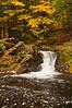 TRMI-10047: Fall color at Overlook Falls