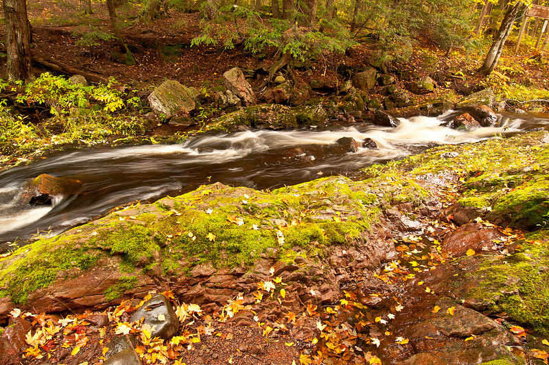 TRMI-10020: Little Carp Creek in late September