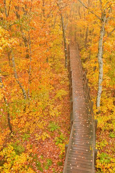 TRMI-10036: Stairway to firetower