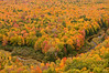 TRMI-10002: Fall color from Lake of the Clouds