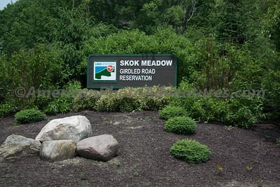 Skok Meadow_20150605_021