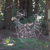 web on the hut