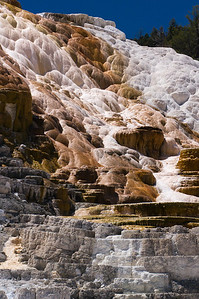 Palette Springs, Mammoth area, Yellowstone National Park
