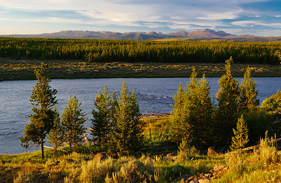 Sunset along the Madison River.  Yellowstone National Park