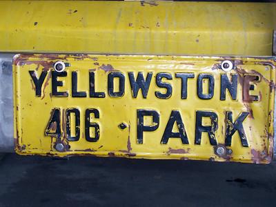 Yellow Bus Montana License Plate