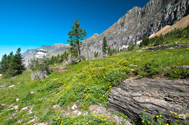 TRMT-12177: Off the Hidden Lake Trail