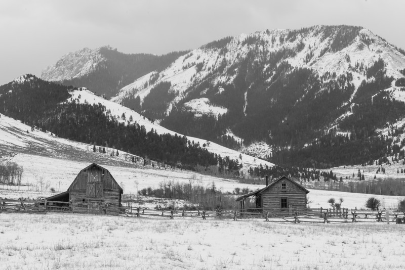 TRWT-12-74: Montana ranch in the Gallatin Mountains