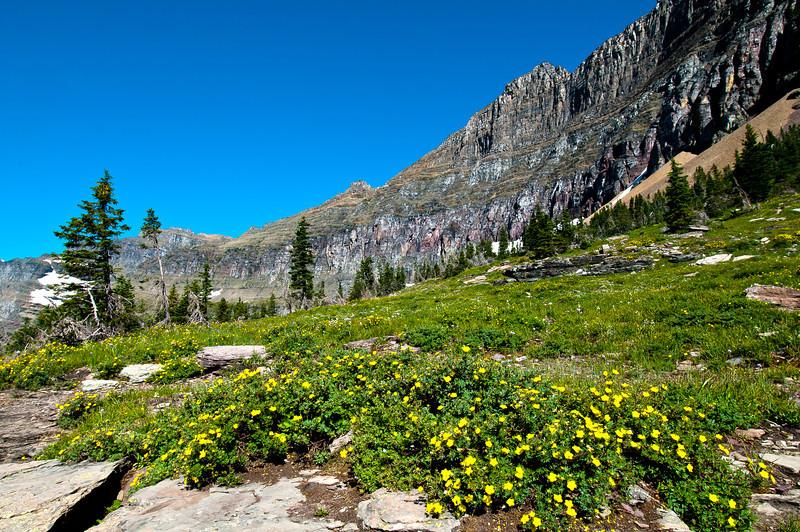 TRMT-12174: Hidden Lake summit