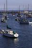 Monterey3683