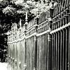 6-26-18: Jefferson Graveyard