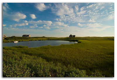Nantucket Landscape