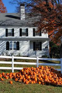 Scamman Farms   Stratham New Hampshire