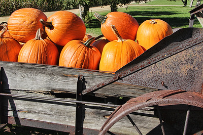 Wagonful of Pumpkins