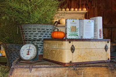 Brookdale Farms  Fall Display