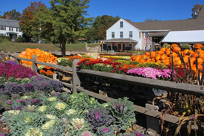 Lull Farms Fall Display