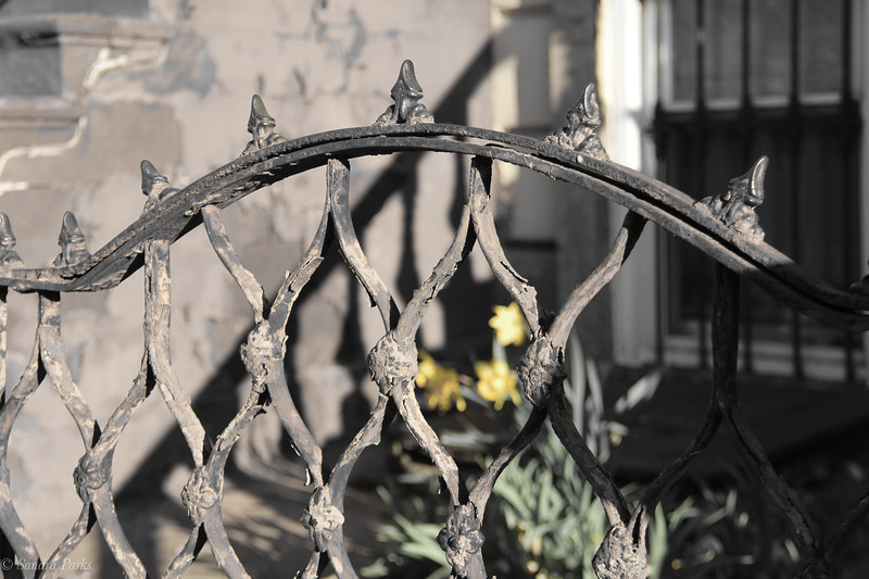 Ironwork, with daffodila