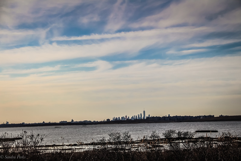 3-27-19: Jamaica Bay Wildlife Refuge