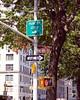 NYC1889