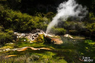 Waimangu Volcanic Rift Valley