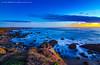 ELEPHANT SEAL BEACH, CA