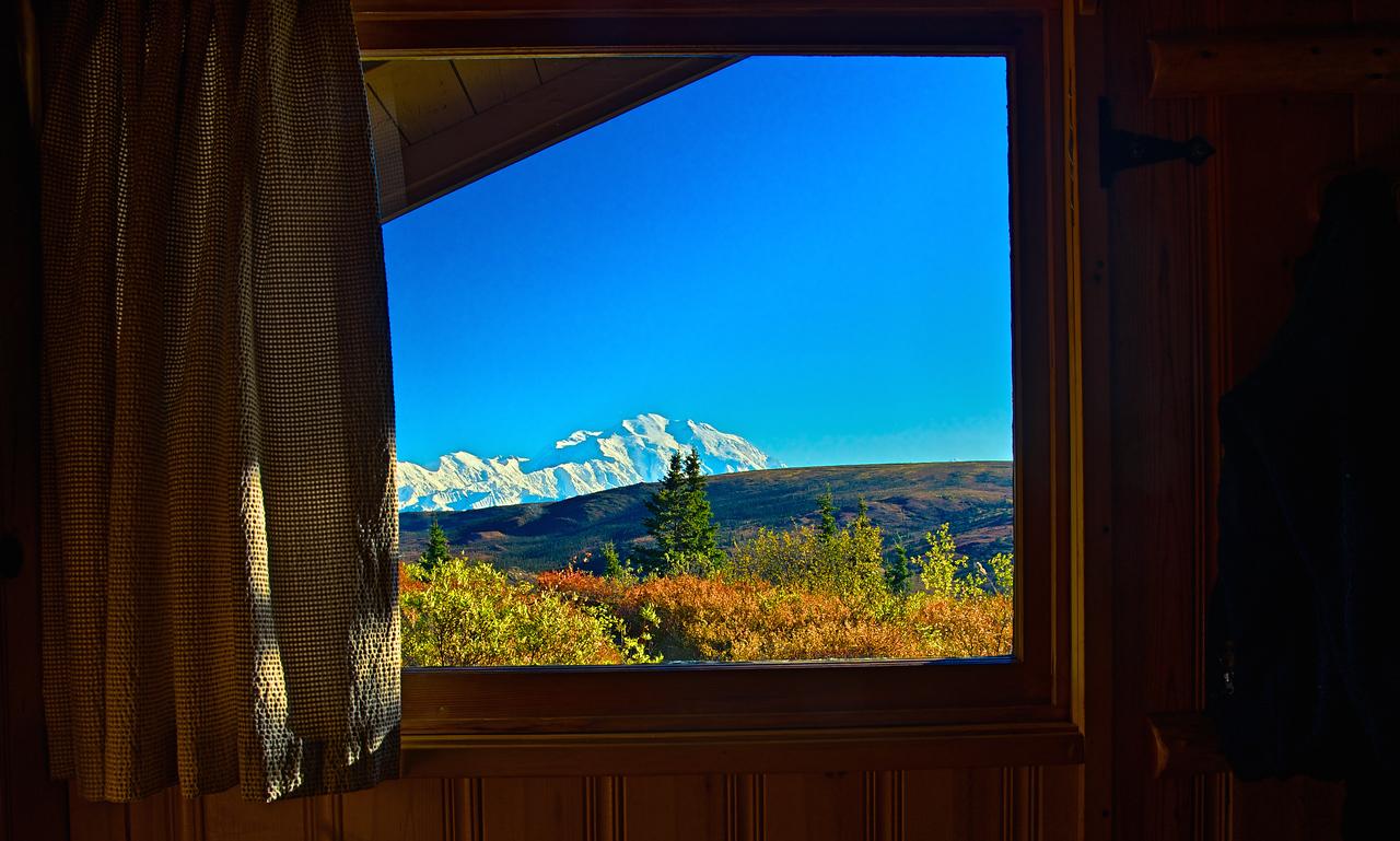 View of Denali from Stampede Cabin - Camp Denali
