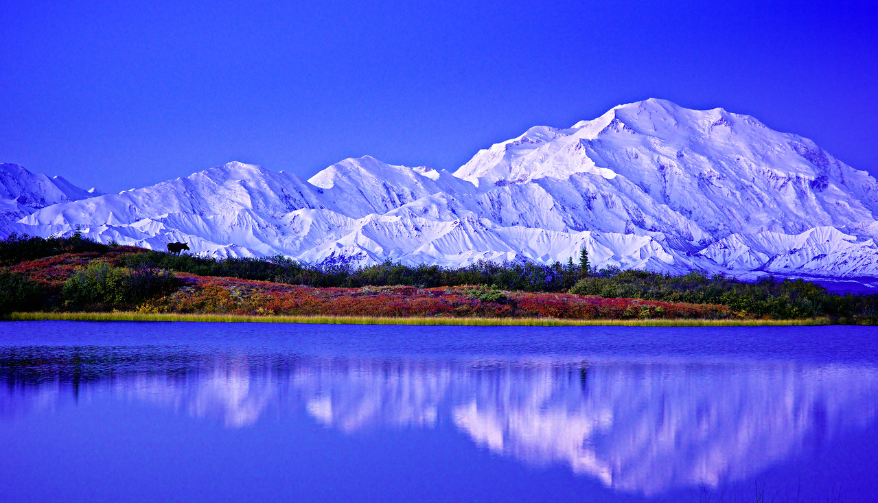 Moose and Denali after Sunrise from Mirror Pond
