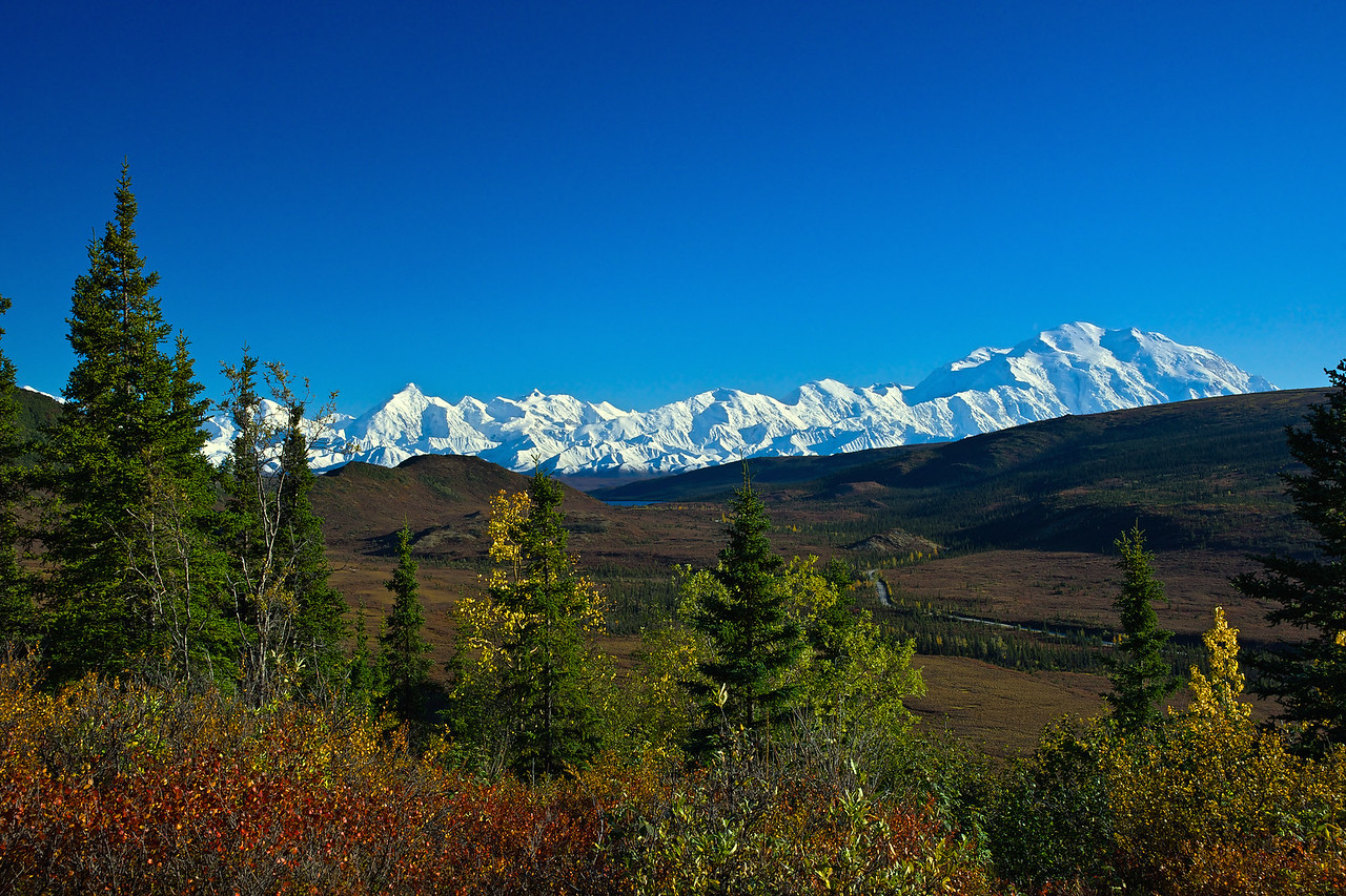 Denali from Our Porch