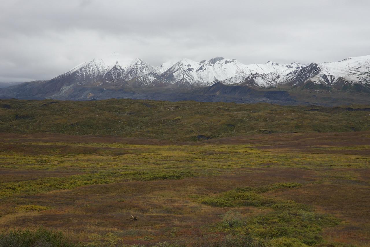 North of Muldrow Glacier