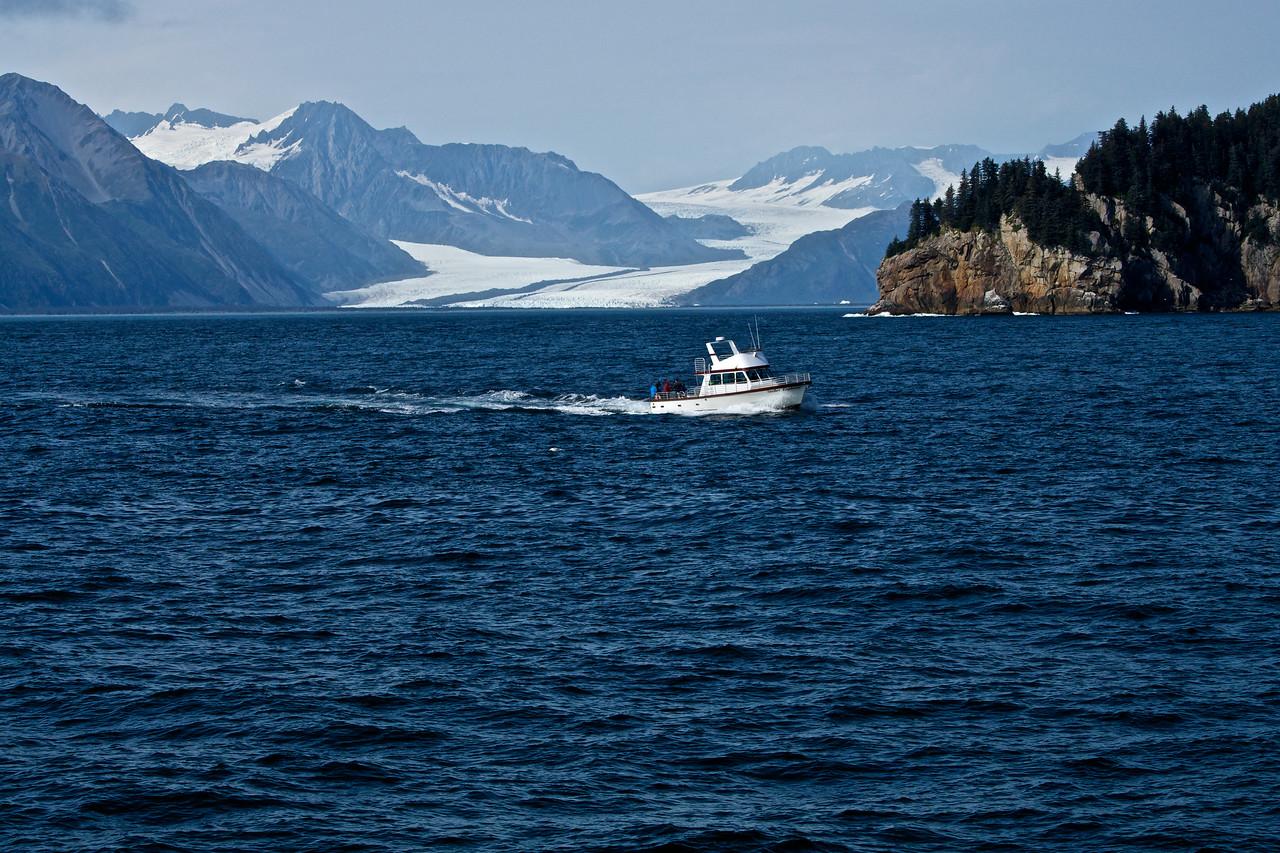 Bear Glacier  Resurrection Bay