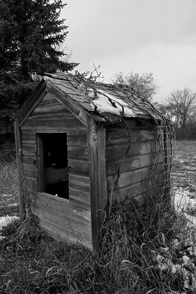 An old shed, take 2