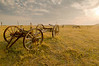 TRND-8036: Old carraige and horses near Medora, ND
