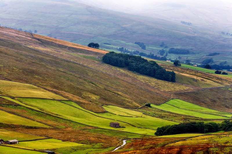 HIgh up in one of the Dales on a misty day!