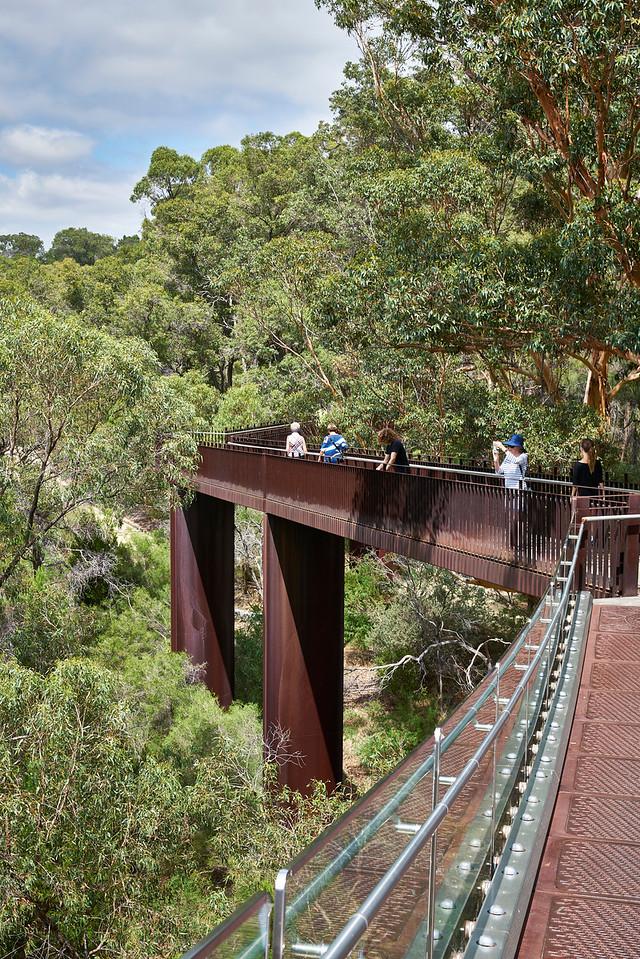 Forest Walk Perth