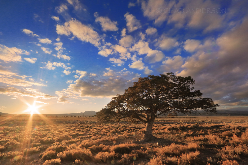 Cedar Valley Sunset
